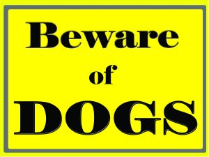 Beware of Dogs, Home Security